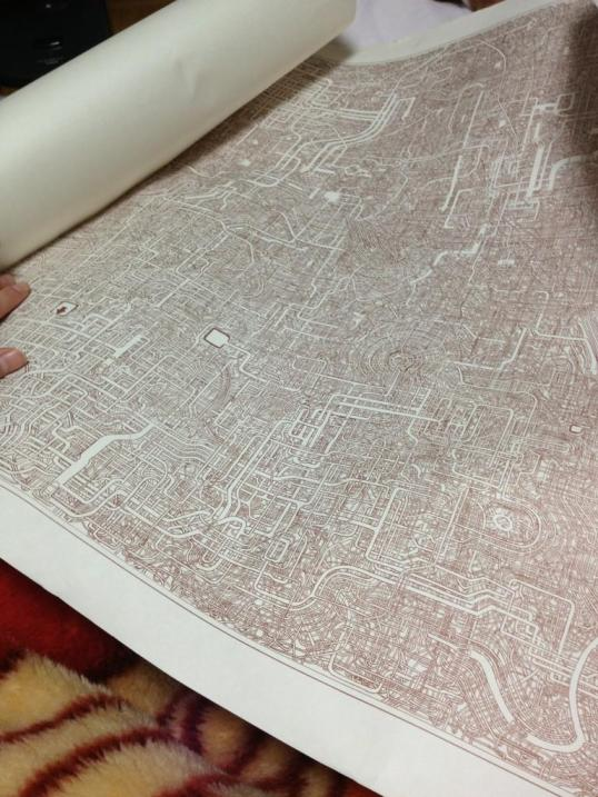 World's Most Intricate Maze?