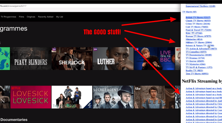 secret Netflix categories
