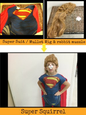 super_squirrel_costume