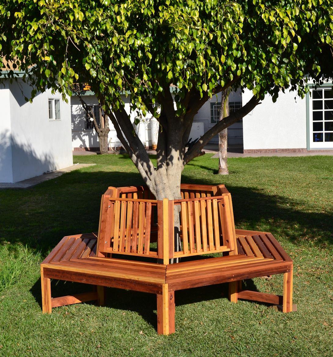 Memorial Natural Redwood Tree Bench Custom Redwood Seating
