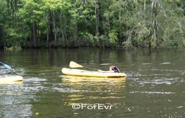 0730-paddlefest-023