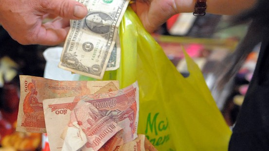 Dollarization - The Ties that binds the markets