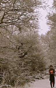 davie snow