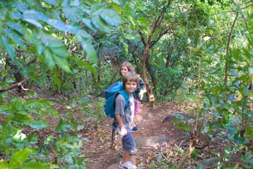Happy little hikers