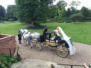LC Veil and Carriage