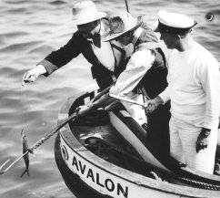 Laurel and Hardy Avalon