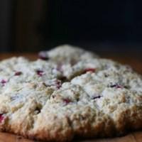 Cranberry Pecan Scones-Throwback