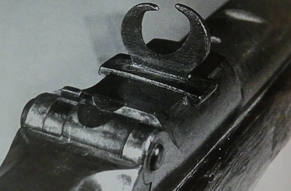 Vintage buckhorn sight added to a Trapdoor Springfield