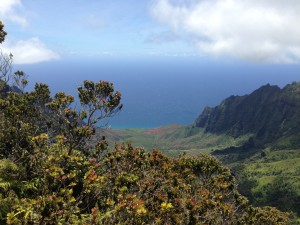 Kalalau Valley seen from Koke'e, with the stunning Kalalau Beach down bellow.