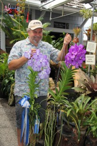 """Neill Sams, owner of Orchid Alley Kaua'i in Old Kapa'a Town, has been growing orchids for at least 25 years. Here, he is holding two champions from the last Mothers' Day Show by the Kaua'i Orchid Society. The Vanda Coerulea, on the left, took """"Best in Show"""" and also an """"Award of Merit"""" from the American Orchid Society, and a cross from the Vanda Manuvadee and Vanda Coerulea took """"Best Purple."""" Visit www.orchidalleykauai.com or call 822-0486 for more information."""