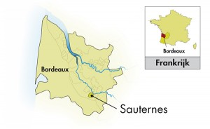 Sauternes in the Bordeaux Region
