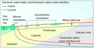 Conceptual diagram of a freshwater lens and marine and groundwater inundation under sea level rising in the Southern O'ahu aquifer. Rotzoll and Fletcher, 2012.