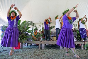 Hula halau Kapa Kanaenae O Kaua'i Iki performs at the Russian Fort in Waimea during a celebration of King Kaumuali'i, Kaua'i's last king, in February.