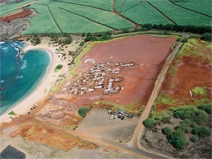 Hanapepe Salt Pond. Contributed photo