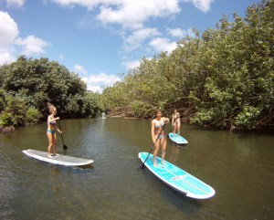 The boards can be taken up Hanalei River.