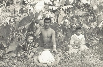 A Hawaiian man pounding taro to make poi, circa 1890s. Taro plants can be seen behind him.