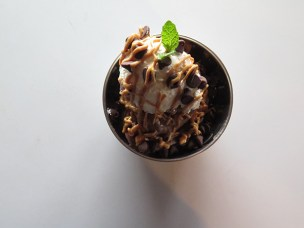 The Decadent. Oreo cookie blended with apple banana and chocolate yogurt, topped with chocolate chips and homemade whipped cream with peanut butter drizzle. Even though it's crushed oreos, the flavor is clean. The scoop on top is a light vanilla flavored whipped cream, firm and delicious.