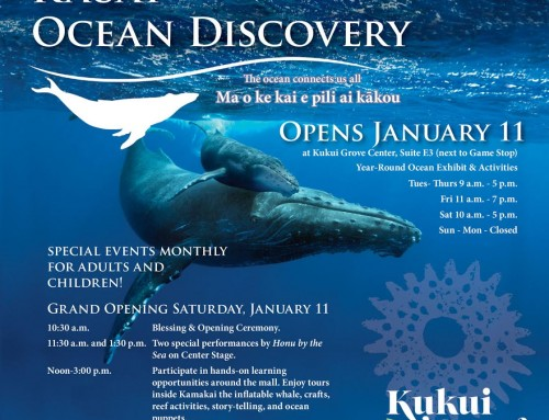 Public Invited: Jan 11 Grand Opening Activities for Kaua`i Ocean Discovery, Kukui Grove Center