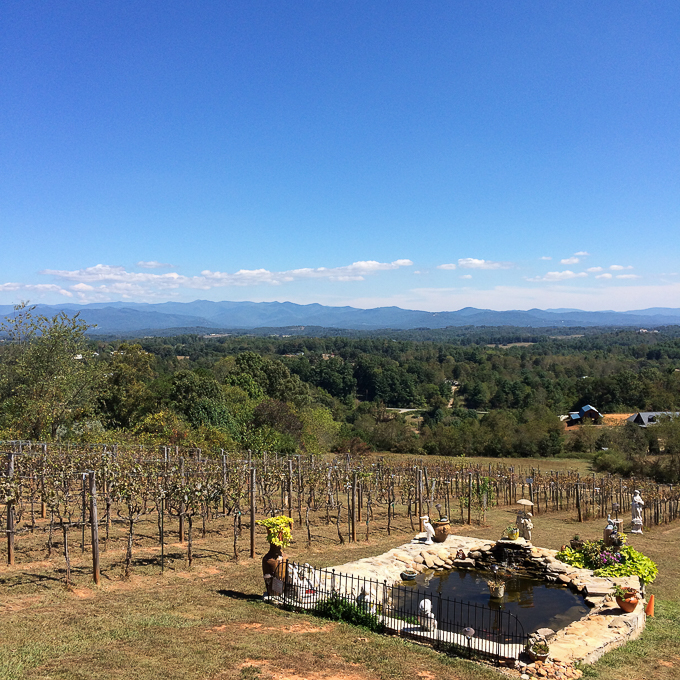 Fontaine Vineyard -- Asheville Travel