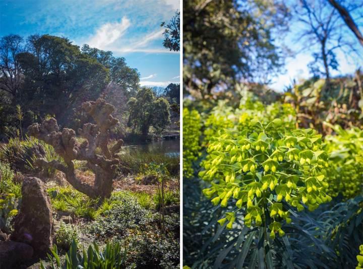 Royal Botanic Gardens Victoria   Melbourne, Australia   Fork in the Kitchen