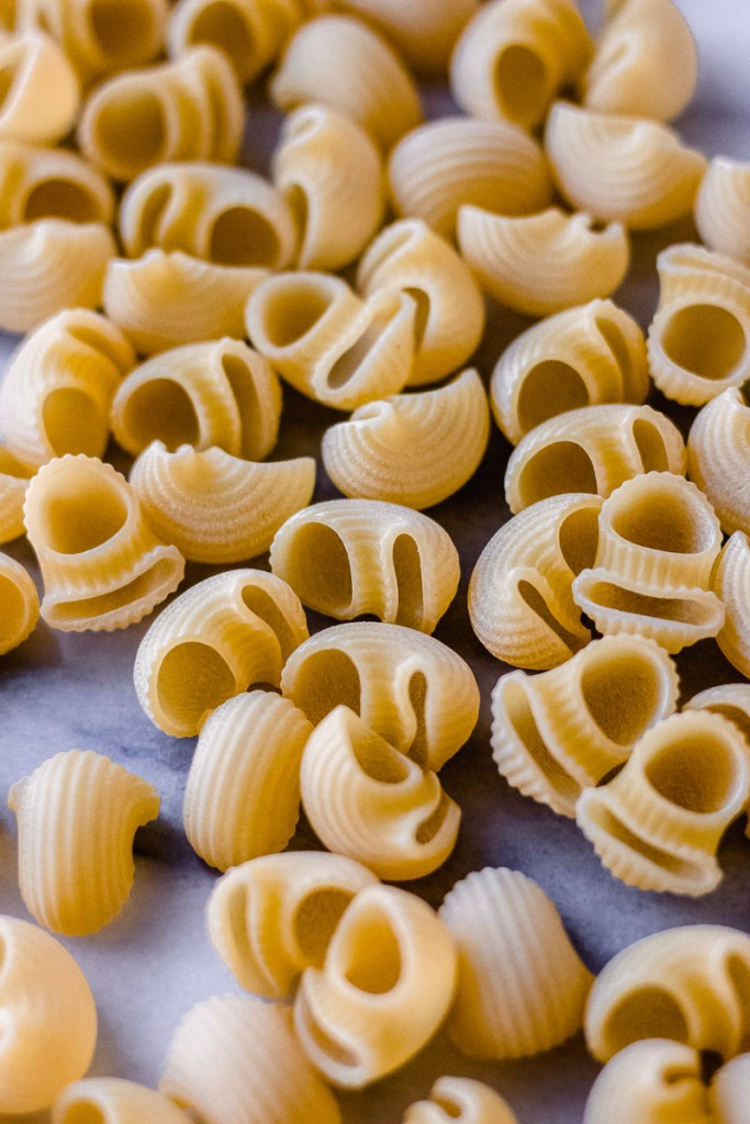 dried pasta for white wine mac and cheese by fork in the kitchen