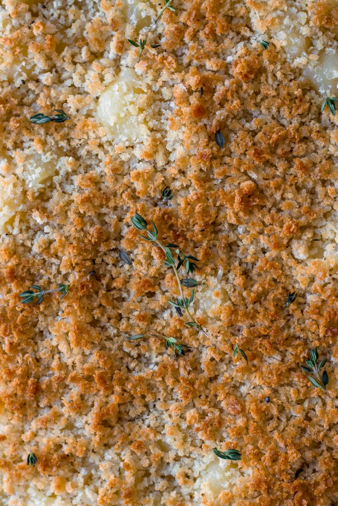 panko topping on white wine mac and cheese by fork in the kitchen