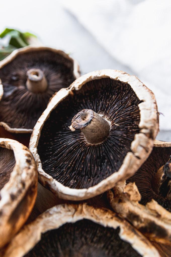 up close portabella mushroom cap