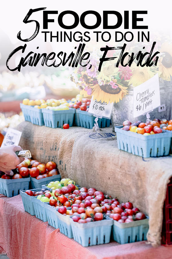 Five foodie things to do in Gainesville, Florida. From farmer's markets to alligator tacos, these picks are the top things to do for foodie travelers in the small Central Florida city of Gainesville. #florida #gainesville #travel #food #restaurants
