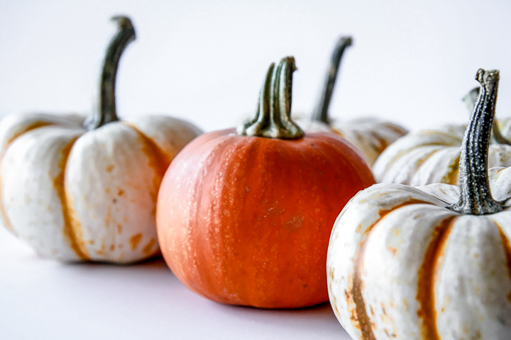 orange and white pumpkins on a white table