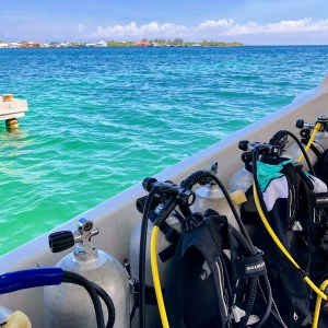 PADI Open Water Scuba Diving Course