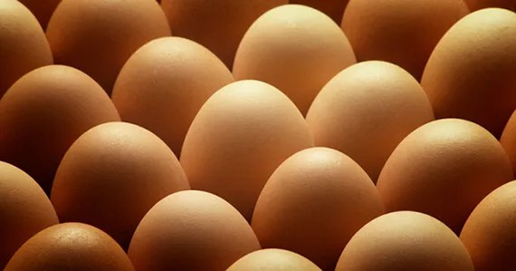 Whats wrong with eggs 570x299 What's Wrong with Eggs?