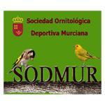 sodmur