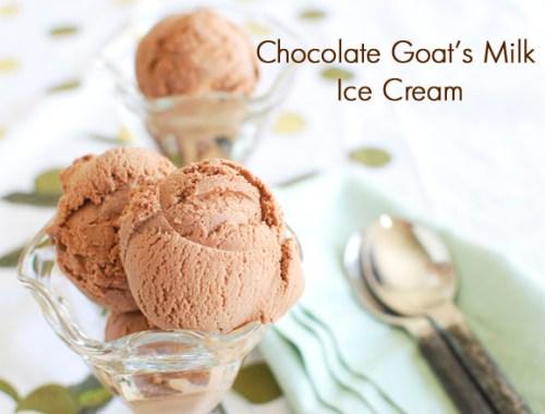 Chocolate Goat's Milk Ice Cream