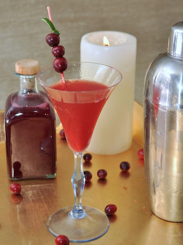 Cranberry Vanilla Cocktail