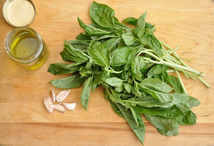 Basil, Oil, and Garlic