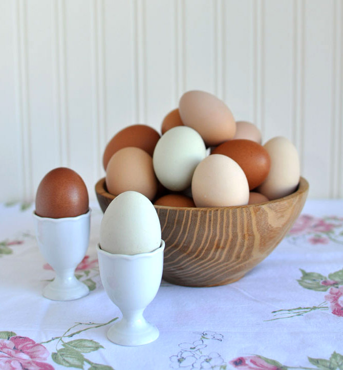 eggbowl6Part-1