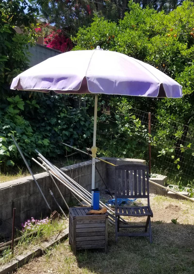 new shade spot