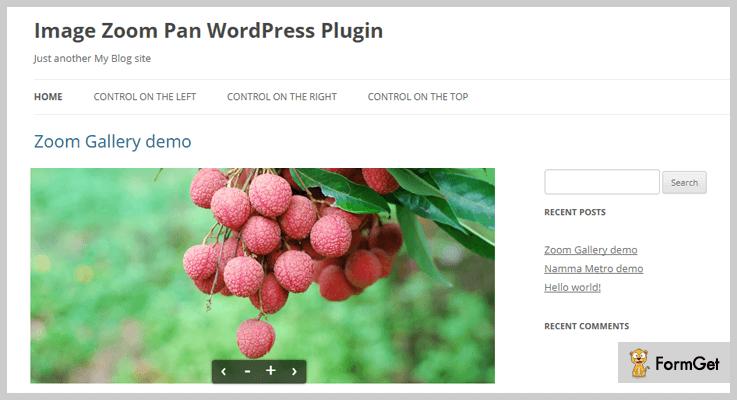 Image Zoom Pan WordPress Plugin
