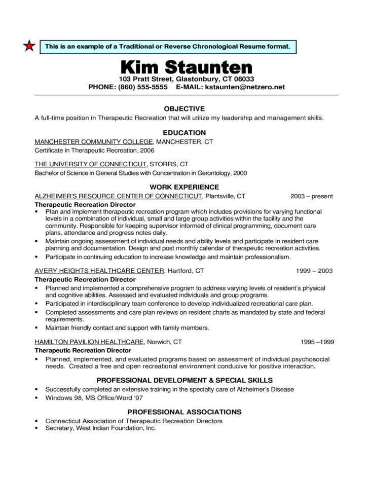 Traditional Resume Examples. Resume Layout Example Resume Examples