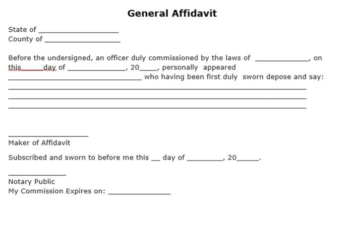 Affidavit form sample