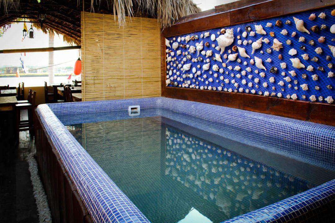 hotel-el-faro-tuxpan-veracruz (12)