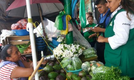 Gestionare recursos para hacer crecer el sector comercio: Maryanela Monroy