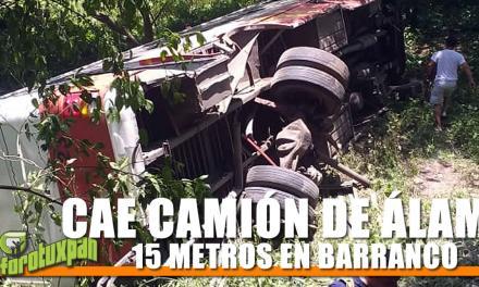 CAE CAMIÓN DE ÁLAMO 15 METROS EN BARRANCO