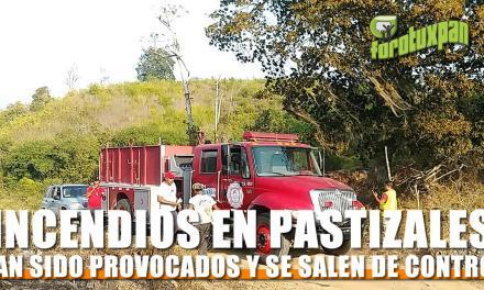 Incendios en pastizales han sido provocados: PCM