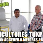 Citricultores tuxpeños podrán acceder a mejores precios