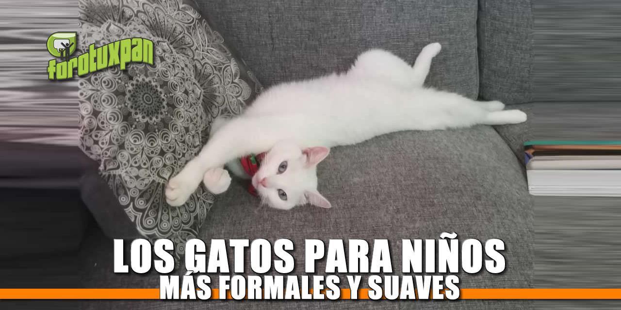 Los Gatos: Para los niños más formales y suaves