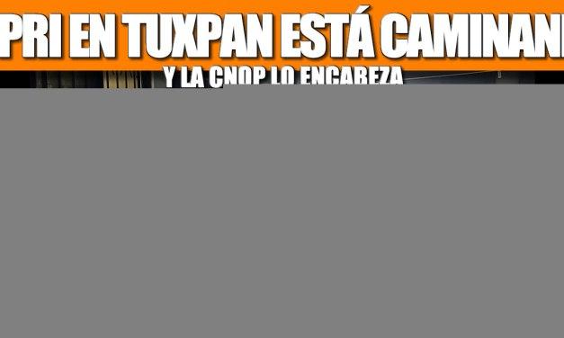 EL PRI EN TUXPAN ESTÁ CAMINANDO Y LA CNOP LO ENCABEZA