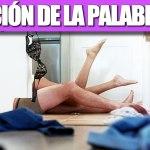 DEFINICIÓN DE LA PALABRA SEXO
