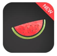 Melon VPN for PC