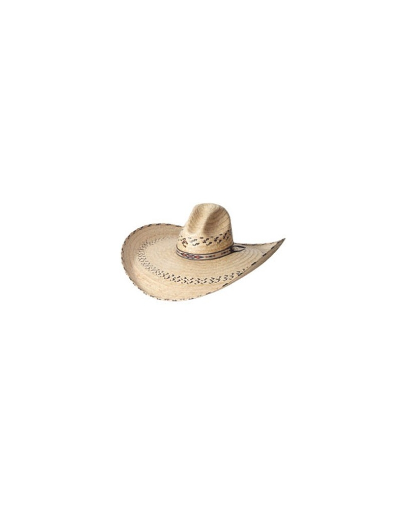 820b3fc020605 Neat Snake Band Charlie 1 Horse Hats On Sale Charlie One Horse Baby ...